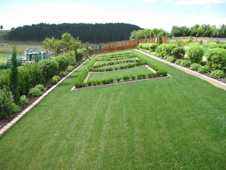 Formal-lawn-and-Planting-box-hedging