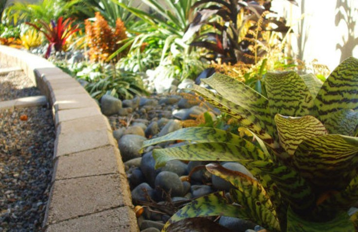 Closeup-of-Planting-and-Ezi-wall-cascading-steps