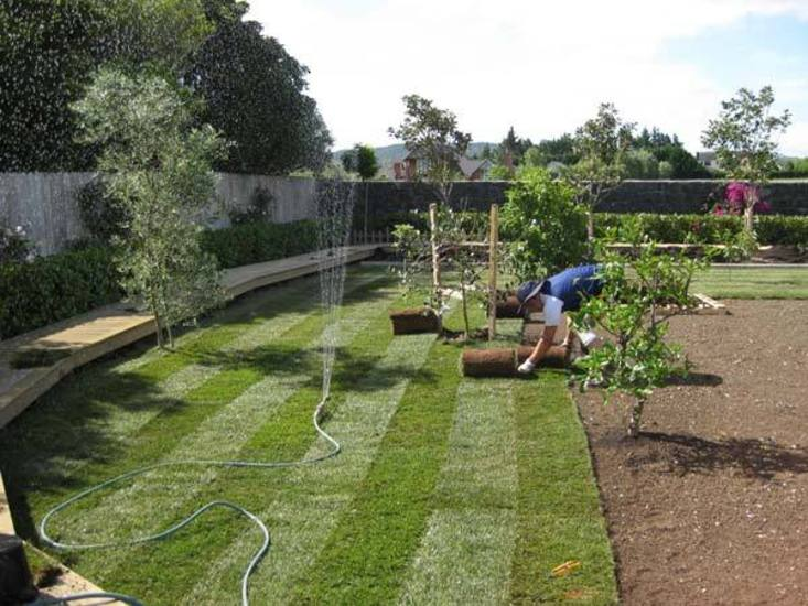 Laying-the-Turf-for-new-garden-makeover
