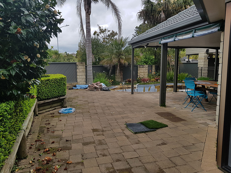 swimming pool landscaping before 3
